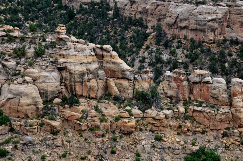 Mesa Verde : Trail to Step House