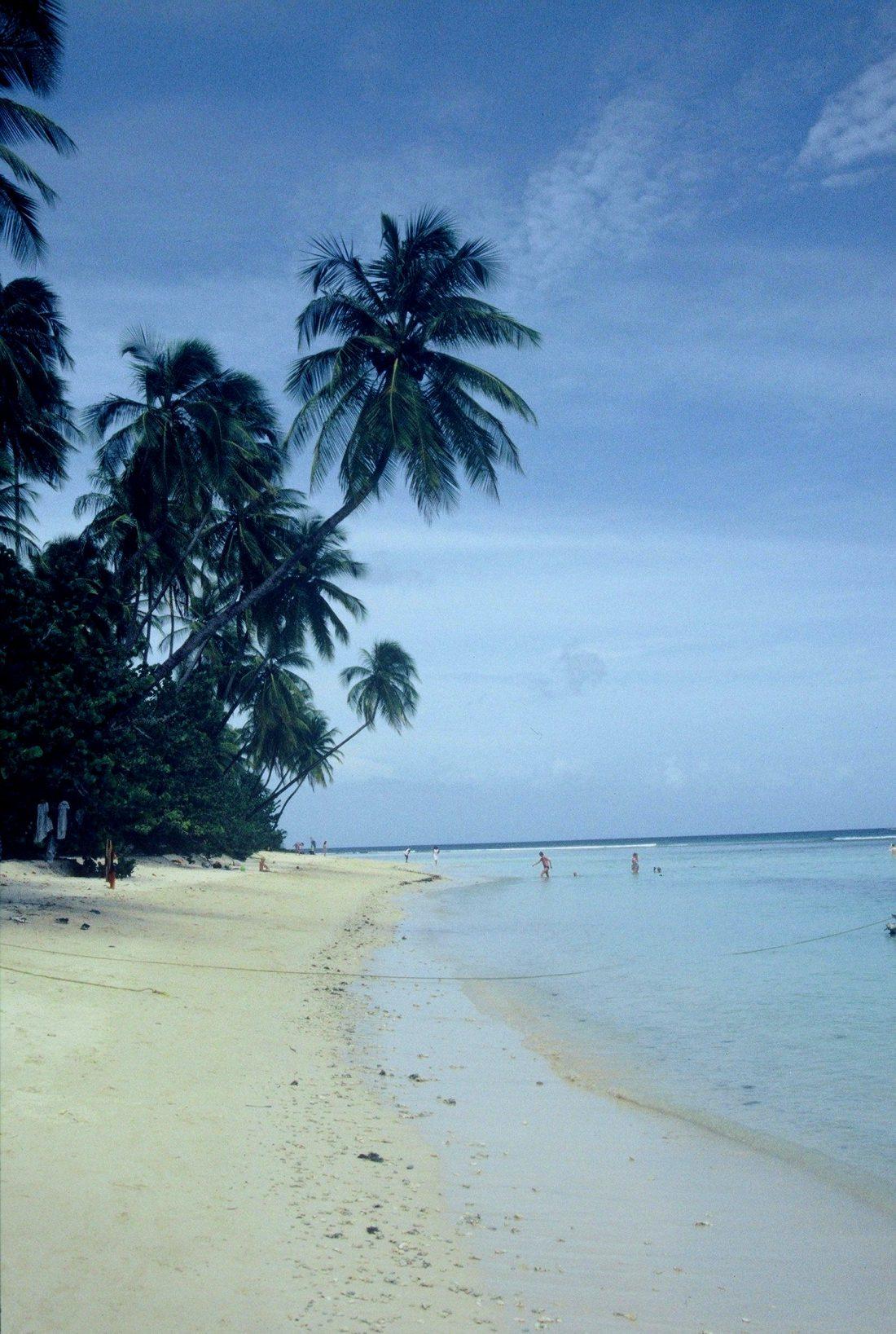 Tobago : Pigeon Point