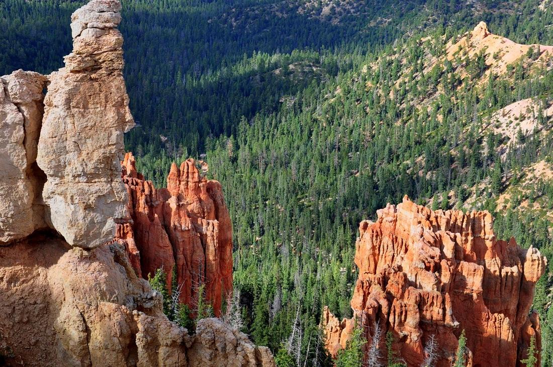 Bryce Canyon : Ponderosa Canyon