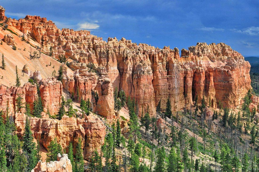 Utah Bryce Canyon : Swamp Canyon