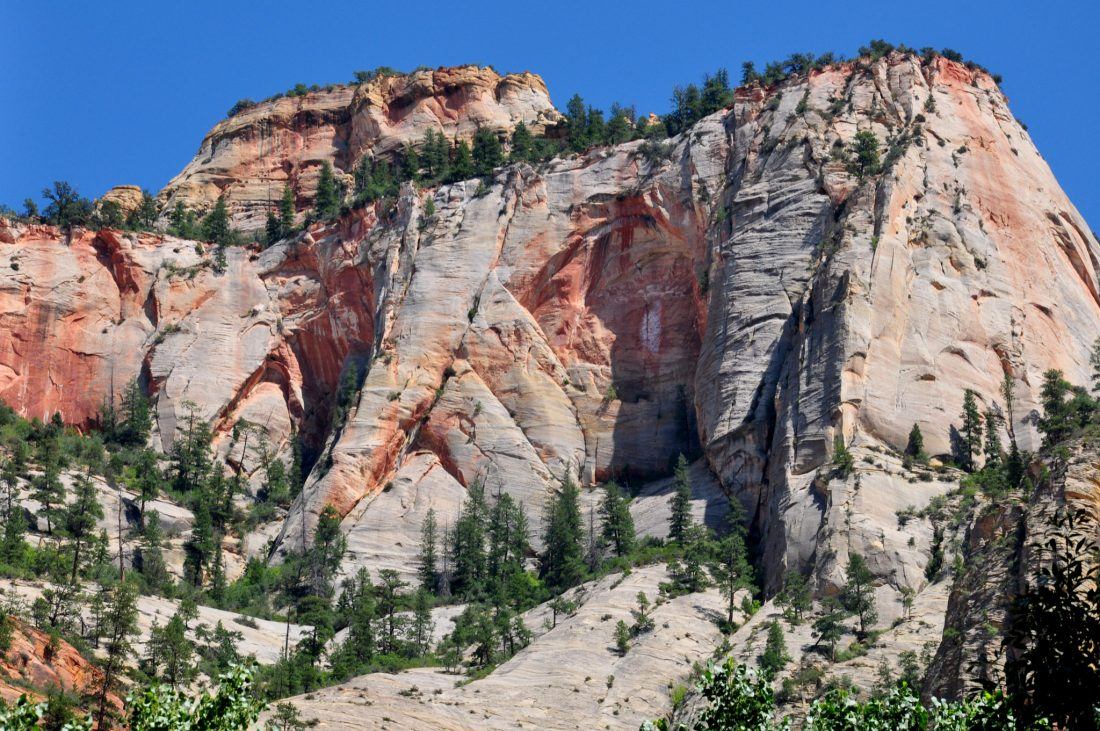 Zion National Park : River Trail