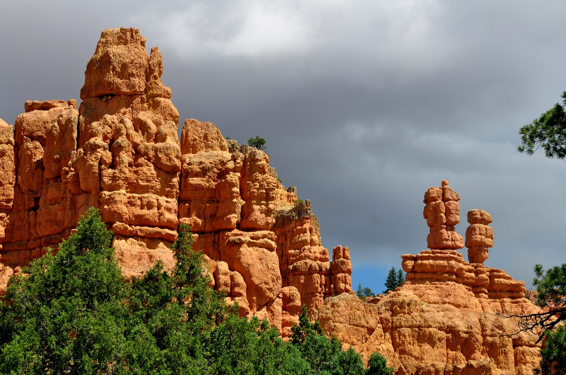 UTAH : Scenic Byway 12 (Red Canyon)