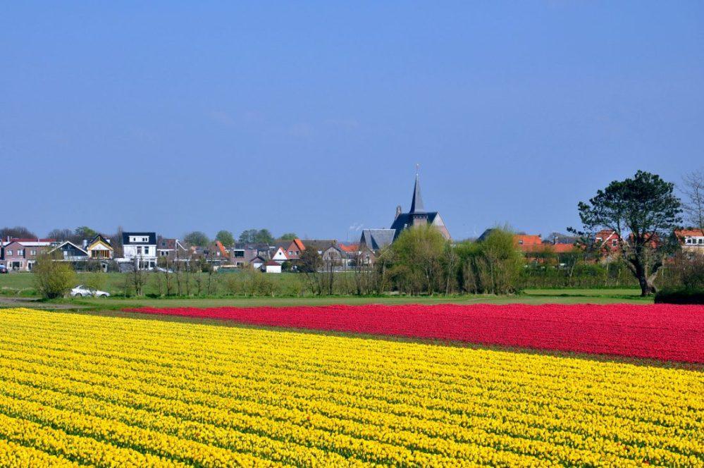 Noord Holland : Egmond aan den Hoef
