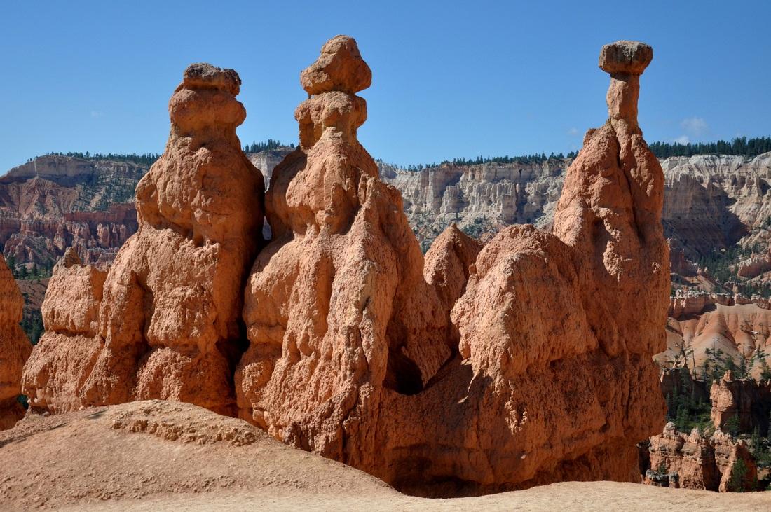 Bryce Canyon : Navajo Trail