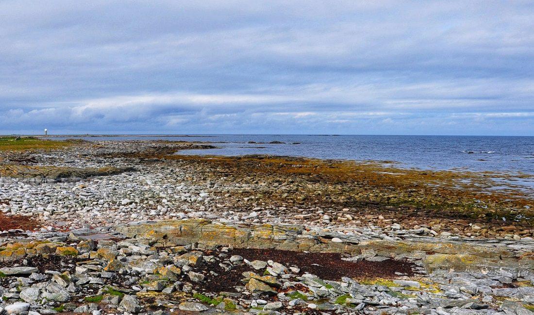Lofoten : Røst island