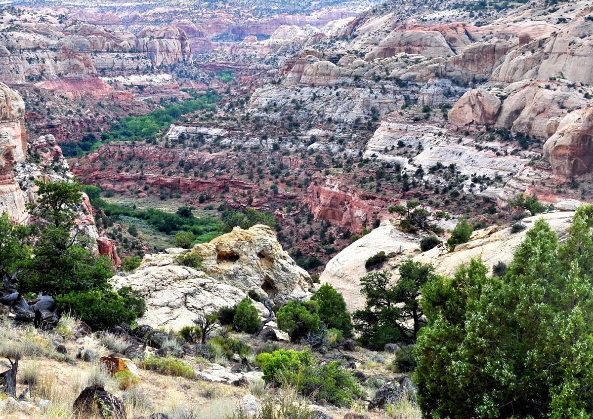utah-ut-12-calf-creek-canyon