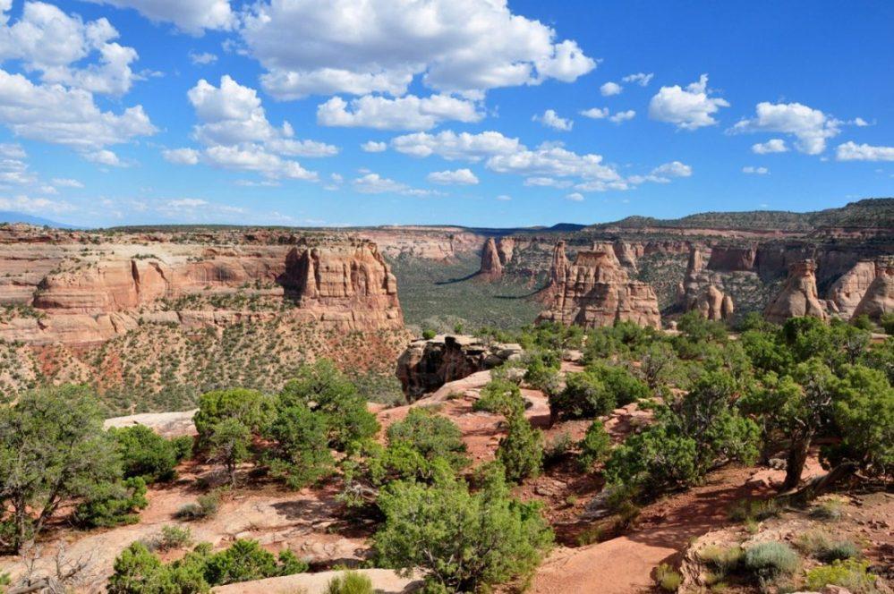 Colorado National Monument : Book Cliffs View