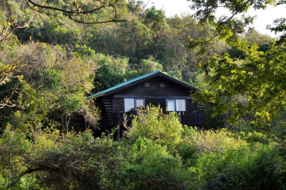 Dwesa Nature Reserve : Chalet