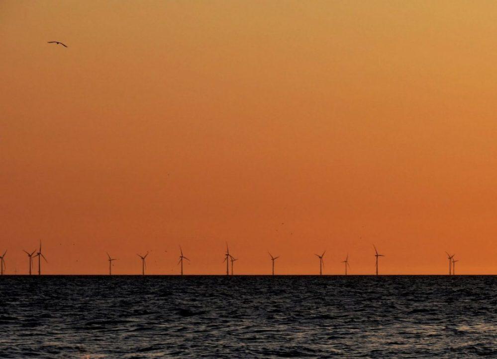 Egmond aan Zee : Wind Molen Park