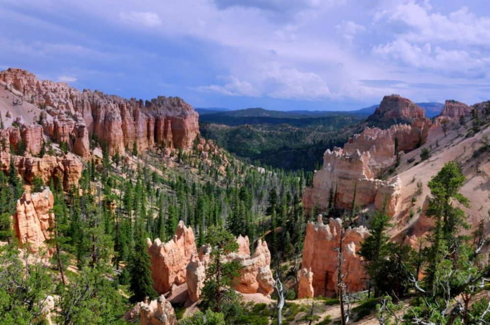 Bryce Canyon : Swamp Canyon