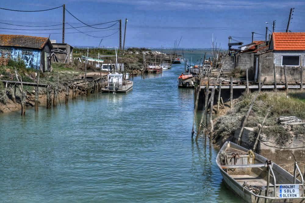 Oléron : La Route des Huitres (La Baudissière)