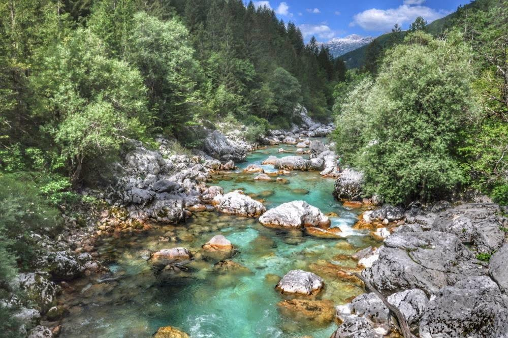 Rivière Soča (Trenta)