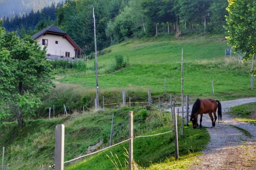 Tourist Farm Perk