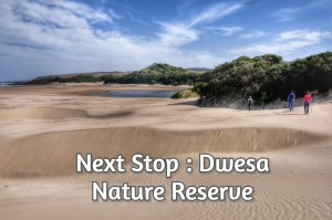 Next Stop : Dwesa Nature Reserve
