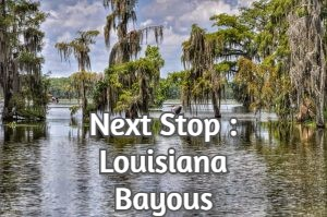 Next Stop : Louisiana Bayous