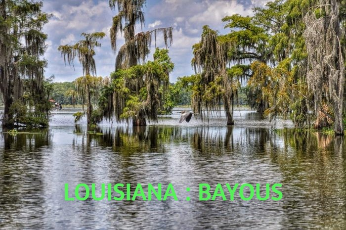 LOUISIANA : BAYOUS