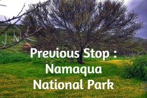 Previous Stop : Namaqua National Park