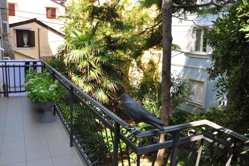 Piran : Atrium Apartment