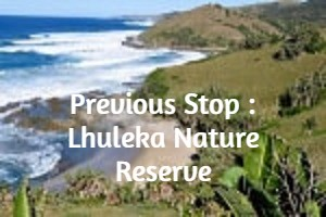 Previous Stop : Lhuleka Nature Reserve