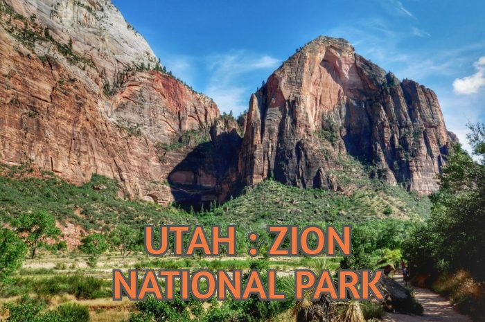 UTAH : ZION NATIONAL PARK