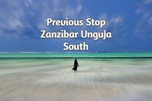 Previous Stop Zanzibar Unguja South